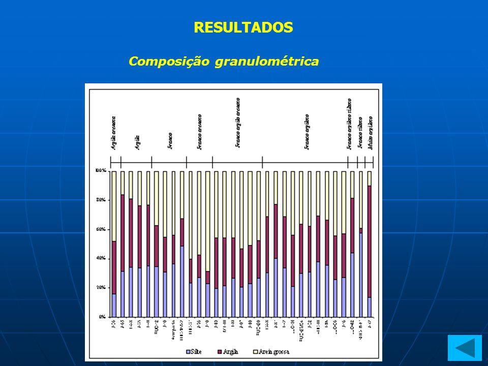 RESULTADOS Estimativa de perdas de solo por meio da variação do nível da superfície do solo Estimativa das perdas de solo Estimativa do assoreamento Estimativa das perdas através do balanço de massa