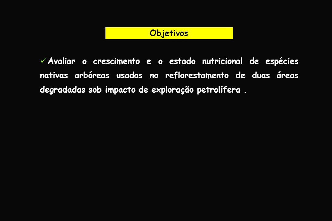 Material e Métodos Base de Operações Geólogo Pedro de Moura (Petrobras-BR) Fevereiro a março de 2005 Jazida 23 LUC 12 Jazida 48 LUC 29 Espécies avaliadas Jazida 23Jazida 48 Jenipapo (P)Acapurana (C) Bacuri (C)Lacre (P) Cumaru (P)Paricá (P)
