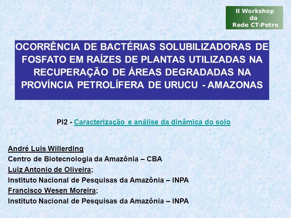 André Luis Willerding Centro de Biotecnologia da Amazônia – CBA Luiz Antonio de Oliveira; Instituto Nacional de Pesquisas da Amazônia – INPA Francisco