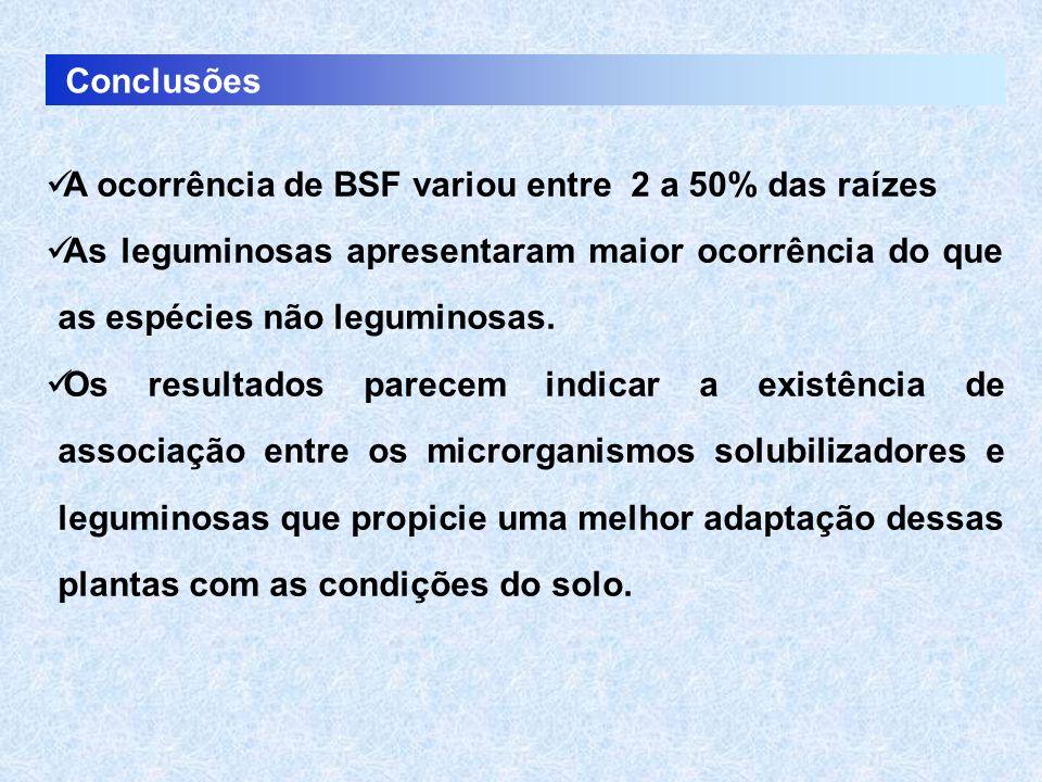 Conclusões A ocorrência de BSF variou entre 2 a 50% das raízes As leguminosas apresentaram maior ocorrência do que as espécies não leguminosas. Os res