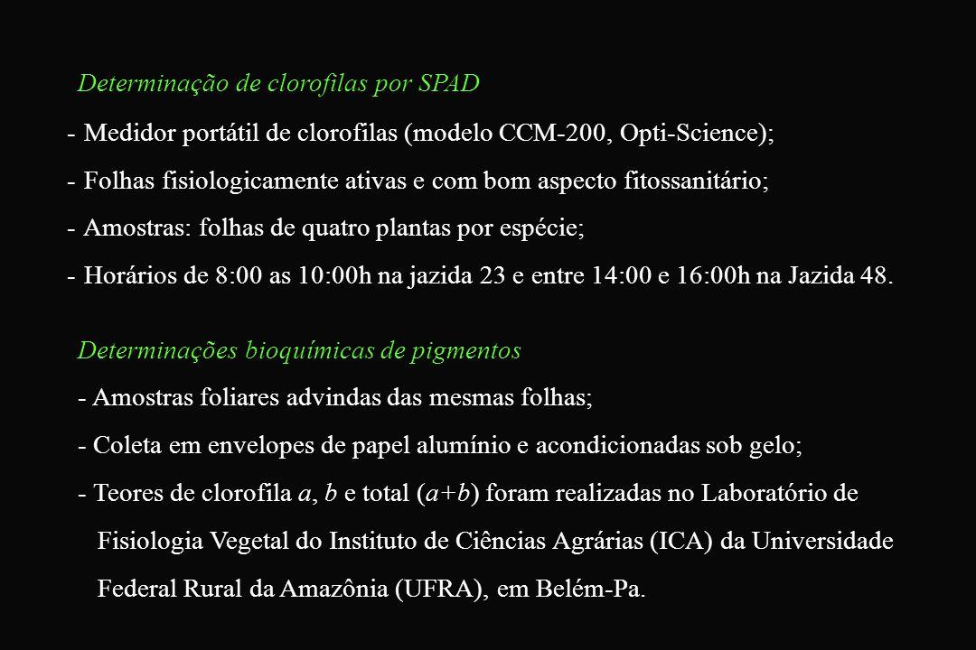Determinação de clorofilas por SPAD - Medidor portátil de clorofilas (modelo CCM-200, Opti-Science); - Folhas fisiologicamente ativas e com bom aspect