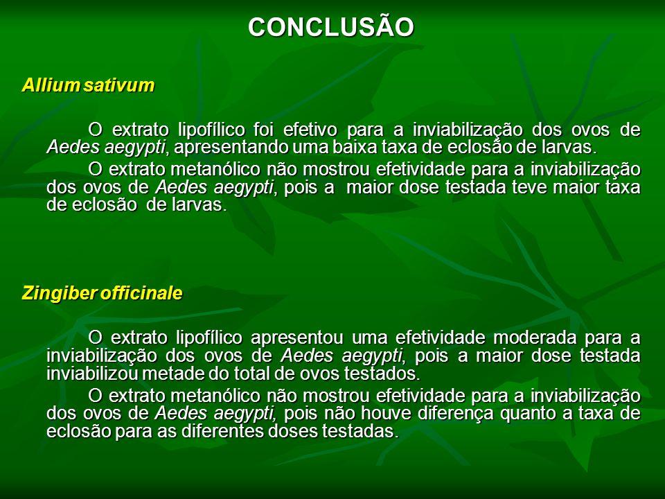 CONCLUSÃO Allium sativum O extrato lipofílico foi efetivo para a inviabilização dos ovos de Aedes aegypti, apresentando uma baixa taxa de eclosão de l