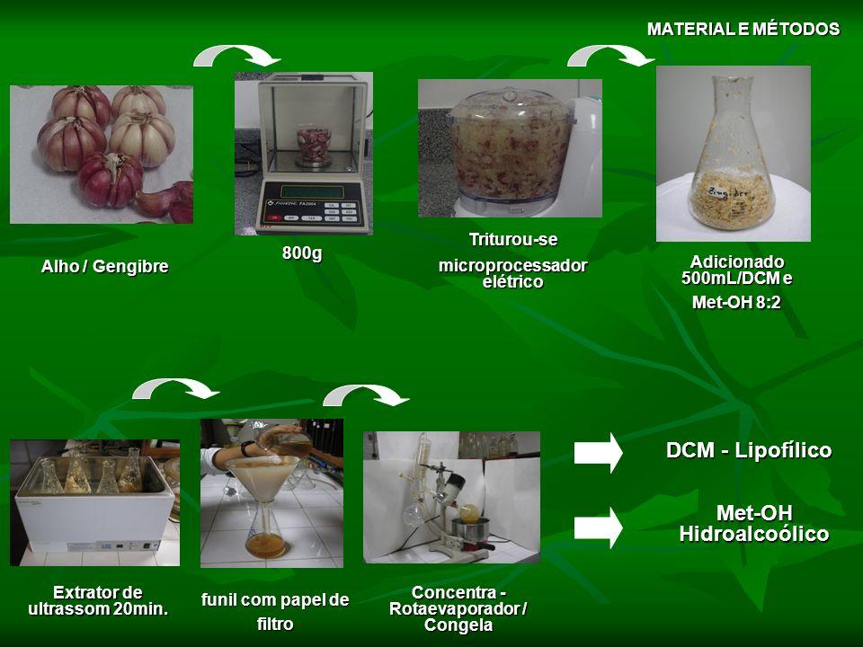 PARTIÇÃO LIOFILIZAÇÃO DCM/H2O (2:1) ACETOH / H2O (2:1) BUTOH / H2O (2:1) Concentra - Rotaevaporador Solubilização Balão de separação 3x (lavagens) decantar Ex.