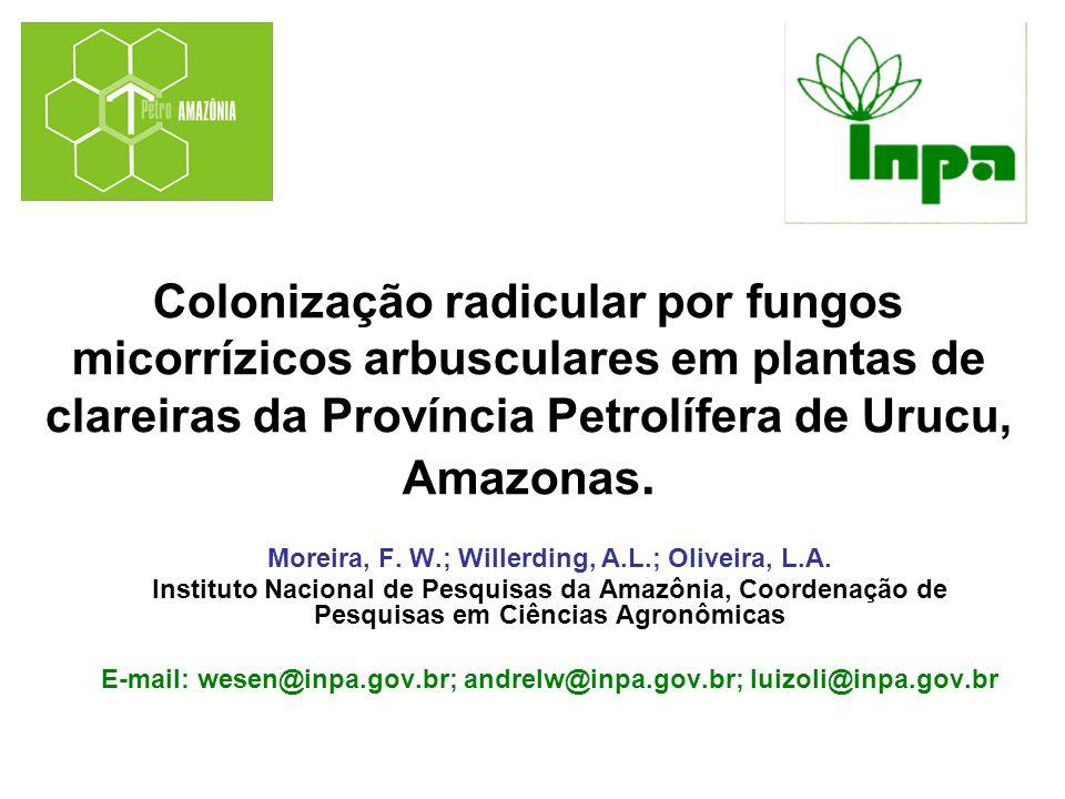 Colonização radicular por fungos micorrízicos arbusculares em plantas de clareiras da Província Petrolífera de Urucu, Amazonas. Moreira, F. W.; Willer