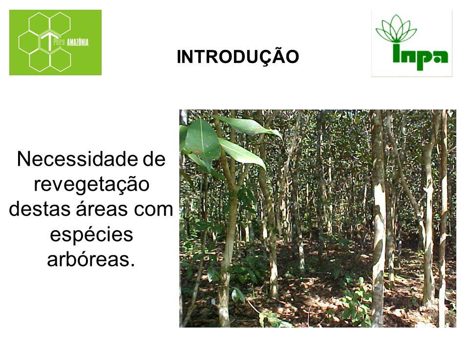 Necessidade de revegetação destas áreas com espécies arbóreas. INTRODUÇÃO