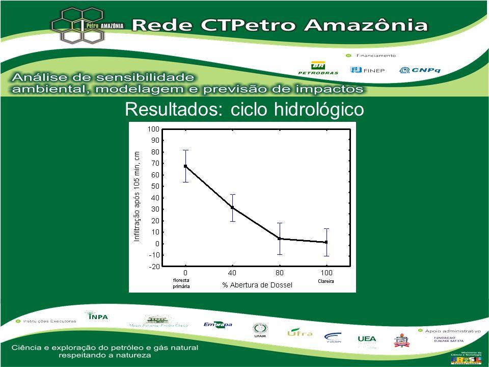 Resultados: sedimentologia