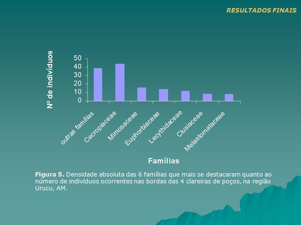 Figura 5. Densidade absoluta das 6 famílias que mais se destacaram quanto ao número de indivíduos ocorrentes nas bordas das 4 clareiras de poços, na r