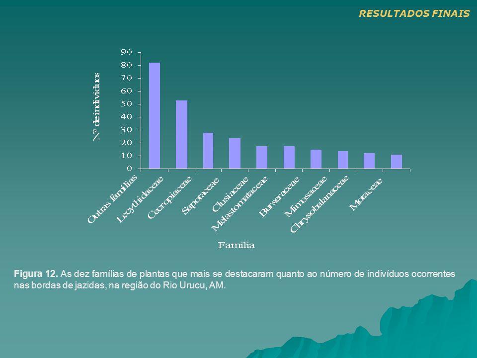 Figura 12. As dez famílias de plantas que mais se destacaram quanto ao número de indivíduos ocorrentes nas bordas de jazidas, na região do Rio Urucu,