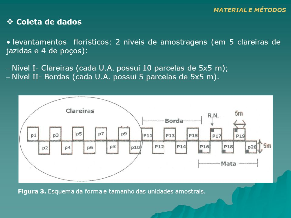 Coleta de dados levantamentos florísticos: 2 níveis de amostragens (em 5 clareiras de jazidas e 4 de poços): – Nível I- Clareiras (cada U.A. possui 10