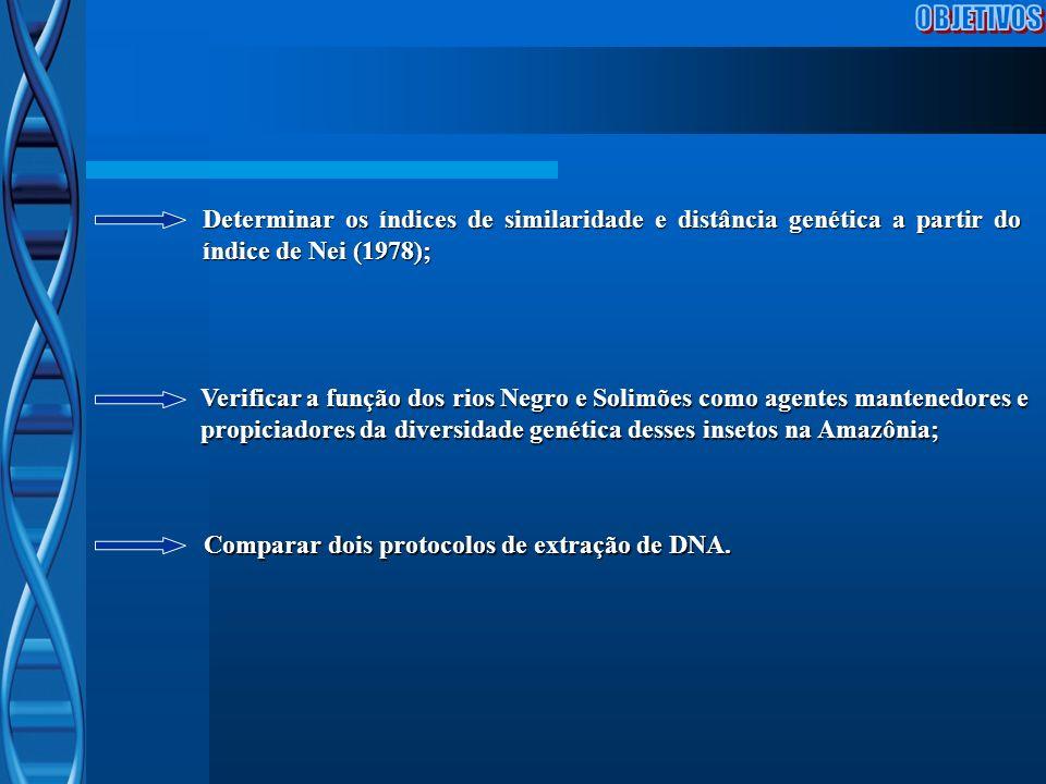 Comparar dois protocolos de extração de DNA. Determinar os índices de similaridade e distância genética a partir do índice de Nei (1978); Verificar a