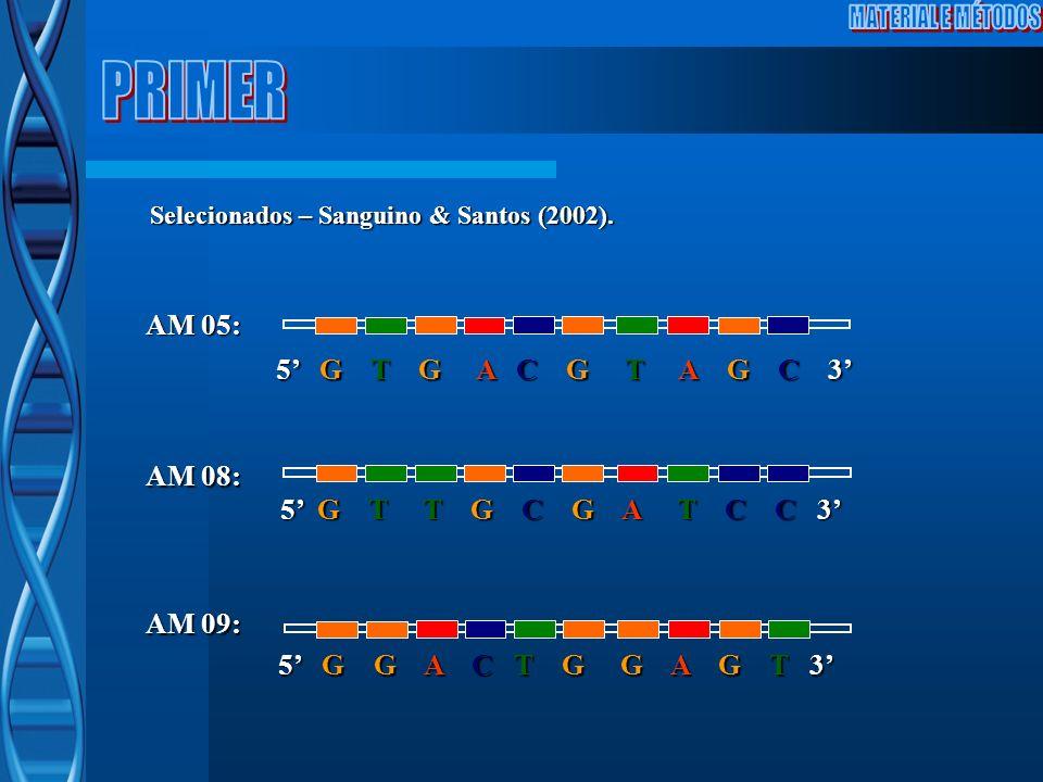AM 05: 5 G T G A C G T A G C 3 AM 08: 5 G T T G C G A T C C 3 AM 09: 5 G G A C T G G A G T 3 Selecionados – Sanguino & Santos (2002).