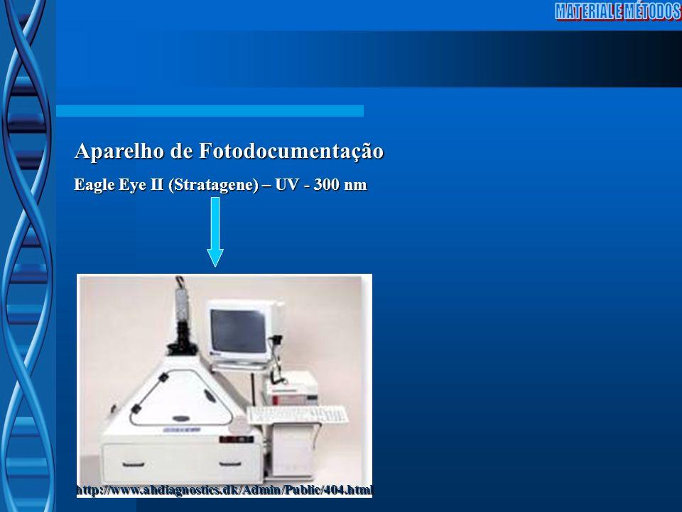 http://www.ahdiagnostics.dk/Admin/Public/404.html Aparelho de Fotodocumentação Eagle Eye II (Stratagene) – UV - 300 nm