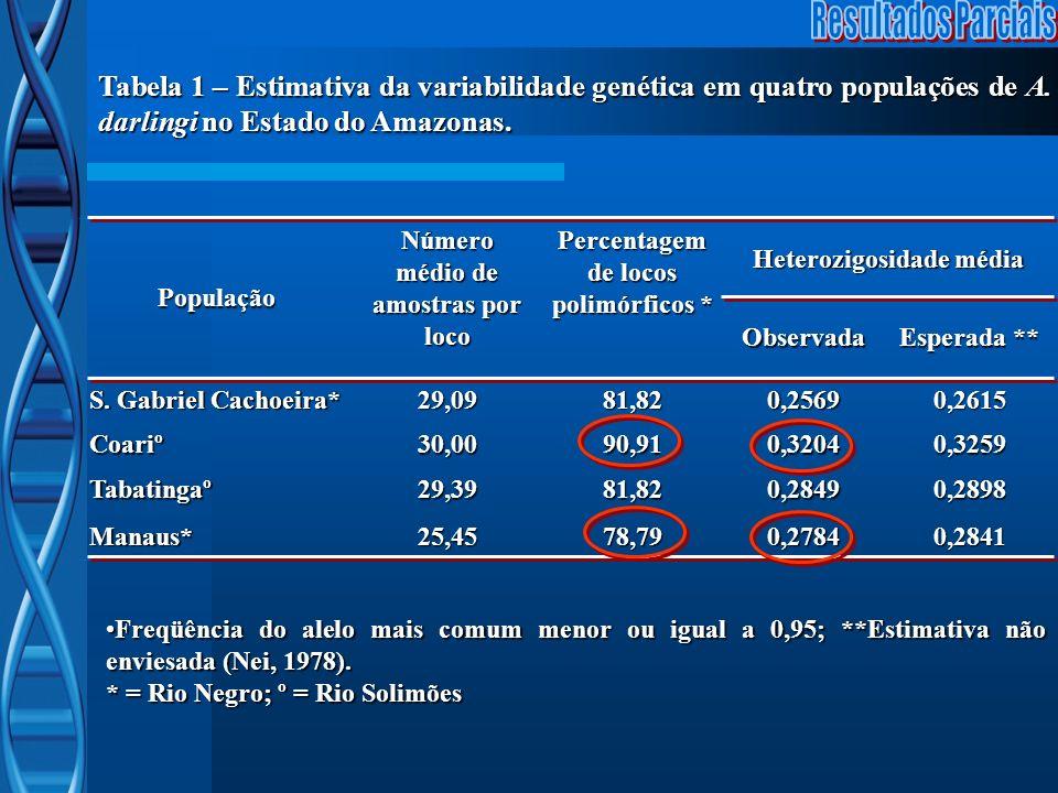 População Número médio de amostras por loco Percentagem de locos polimórficos * Heterozigosidade média Observada Esperada ** S. Gabriel Cachoeira* 29,