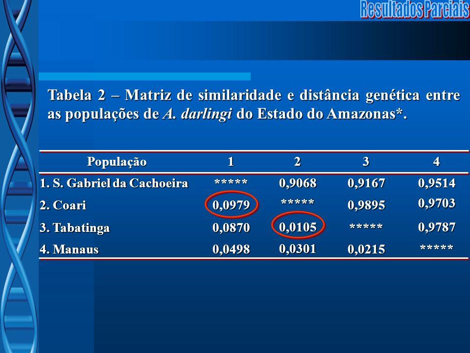 Tabela 2 – Matriz de similaridade e distância genética entre as populações de A. darlingi do Estado do Amazonas*. População1234 1. S. Gabriel da Cacho