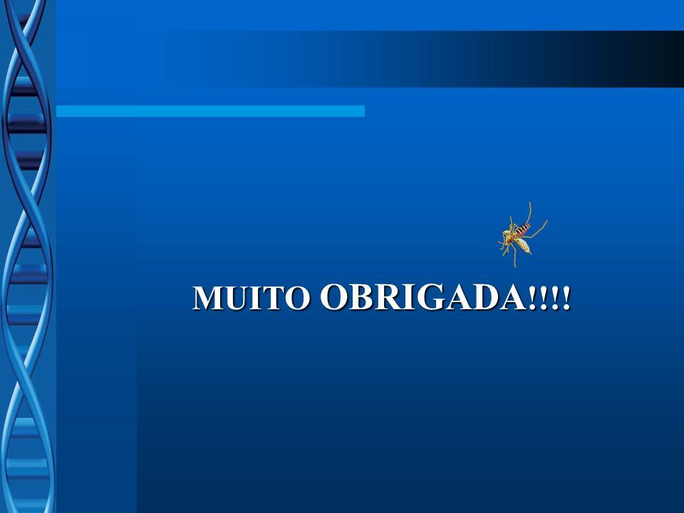 MUITO OBRIGADA !!!!