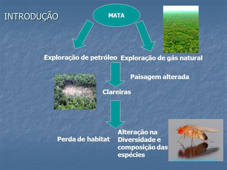INTRODUÇÃO Exploração de petróleo Exploração de gás natural MATA Clareiras Perda de habitat Alteração na Diversidade e composição das espécies Paisage