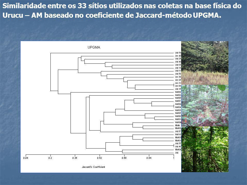 Caracterização das espécies de drosofilídeos encontradas no Urucu.