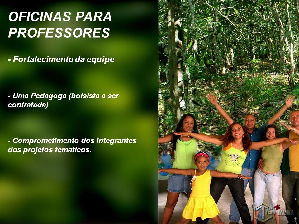 OFICINAS PARA PROFESSORES - Fortalecimento da equipe - Uma Pedagoga (bolsista a ser contratada) - Comprometimento dos integrantes dos projetos temátic