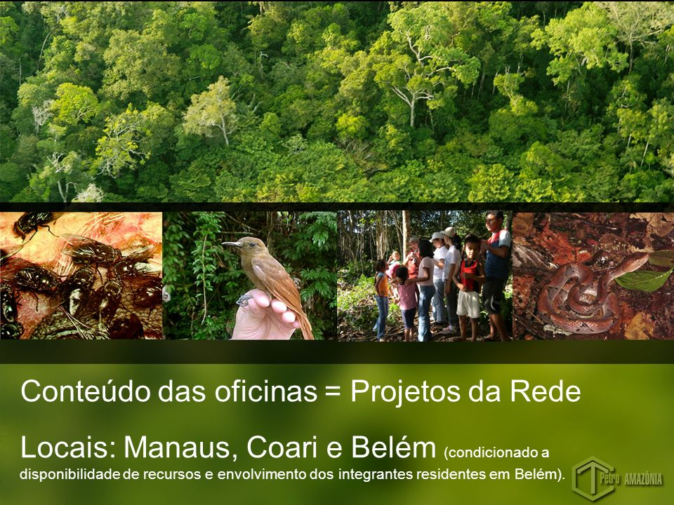 Conteúdo das oficinas = Projetos da Rede Locais: Manaus, Coari e Belém (condicionado a disponibilidade de recursos e envolvimento dos integrantes resi
