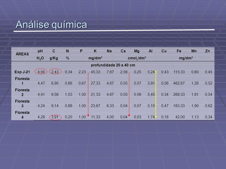 Análise química ÁREAS pHCNPKNaCaMgAlCuFeMnZn H2OH2Og/Kg%mg/dm 3 cmol c /dm 3 mg/dm 3 profundidade 20 a 40 cm Exp J-214,902,430,342,2345,337,672,560,25
