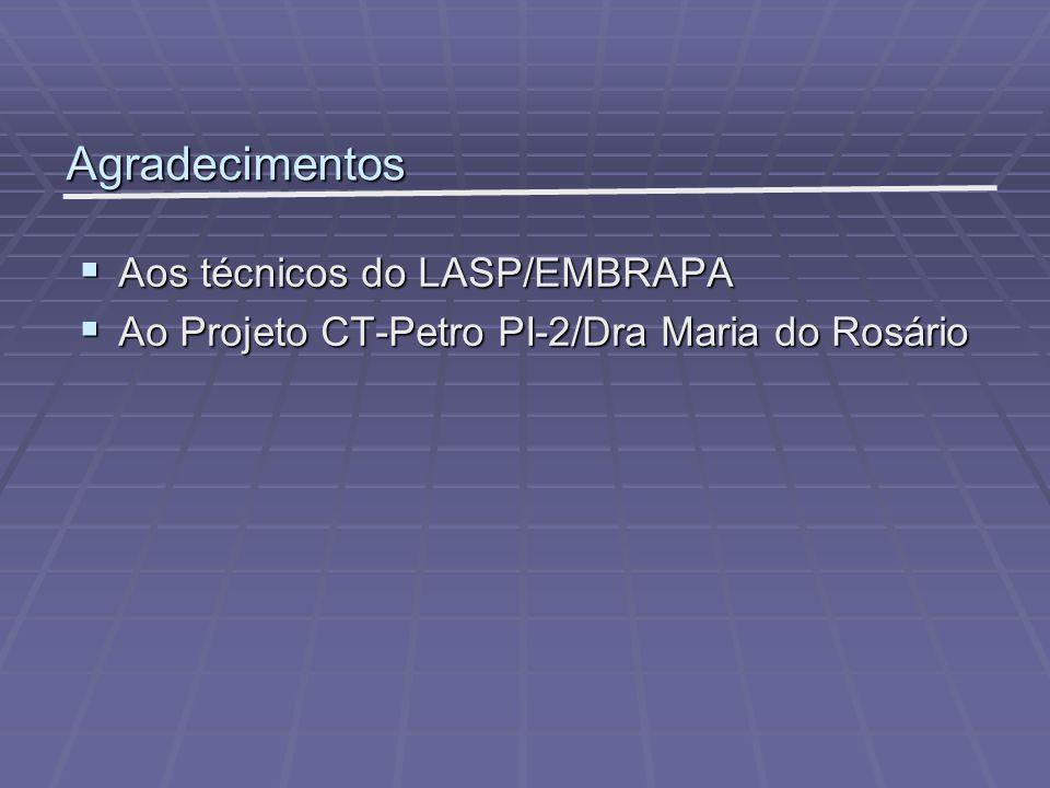 Agradecimentos Aos técnicos do LASP/EMBRAPA Aos técnicos do LASP/EMBRAPA Ao Projeto CT-Petro PI-2/Dra Maria do Rosário Ao Projeto CT-Petro PI-2/Dra Ma