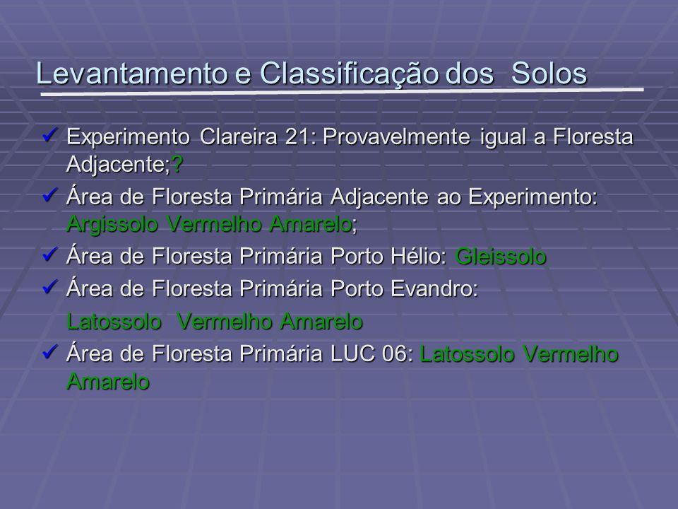 Levantamento e Classificação dos Solos Experimento Clareira 21: Provavelmente igual a Floresta Adjacente;? Experimento Clareira 21: Provavelmente igua