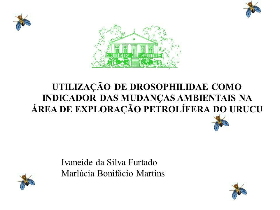 UTILIZAÇÃO DE DROSOPHILIDAE COMO INDICADOR DAS MUDANÇAS AMBIENTAIS NA ÁREA DE EXPLORAÇÃO PETROLÍFERA DO URUCU Ivaneide da Silva Furtado Marlúcia Bonifácio Martins
