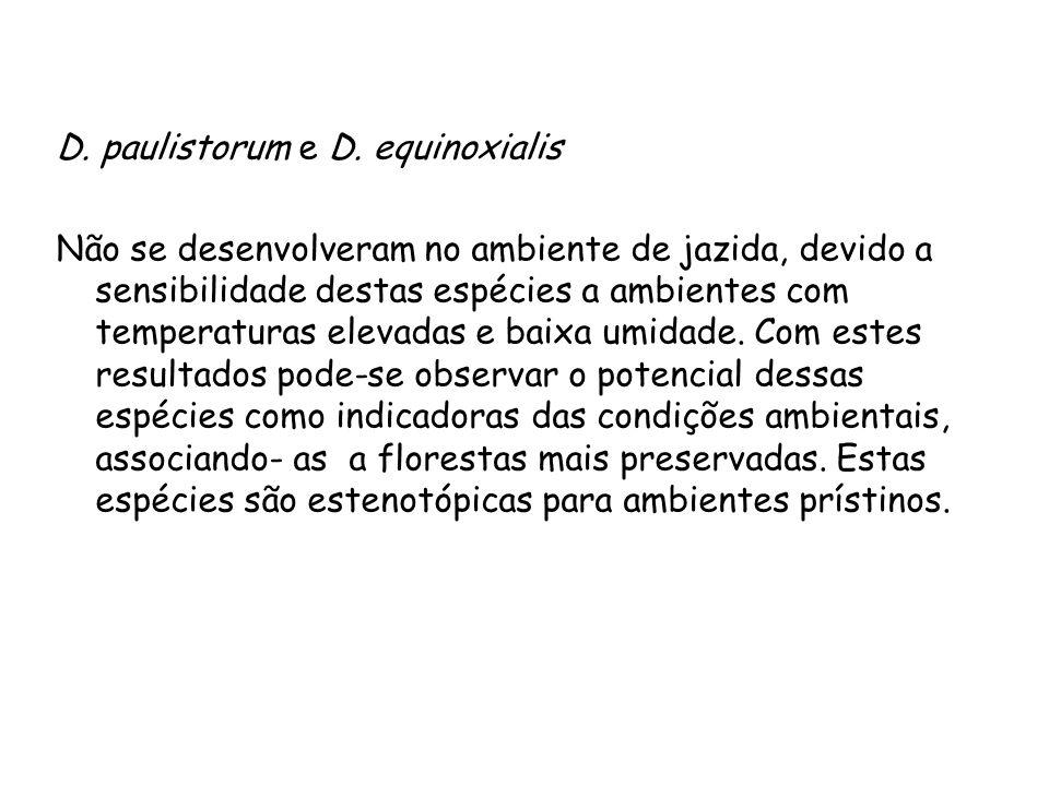 D.paulistorum e D.
