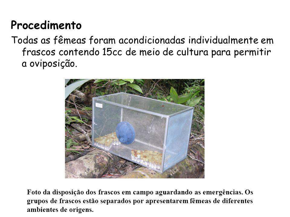 Primeira etapa MATA DISTRIBUIÇÃO RODÍZIO 1 RODÍZIO 2 Esquema de distribuição das fêmeas capturadas na mata e clareira natural e foram utilizadas na primeira etapa do experimento em campo.