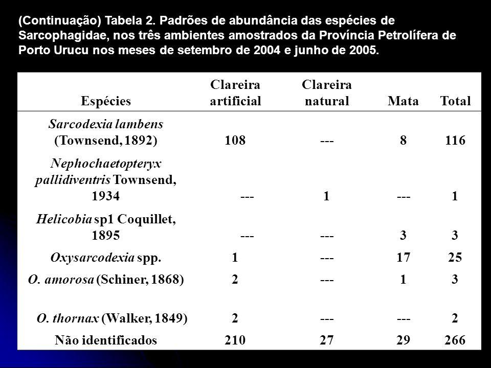 Espécies Clareira artificial Clareira naturalMataTotal Sarcodexia lambens (Townsend, 1892)108---8116 Nephochaetopteryx pallidiventris Townsend, 1934 -