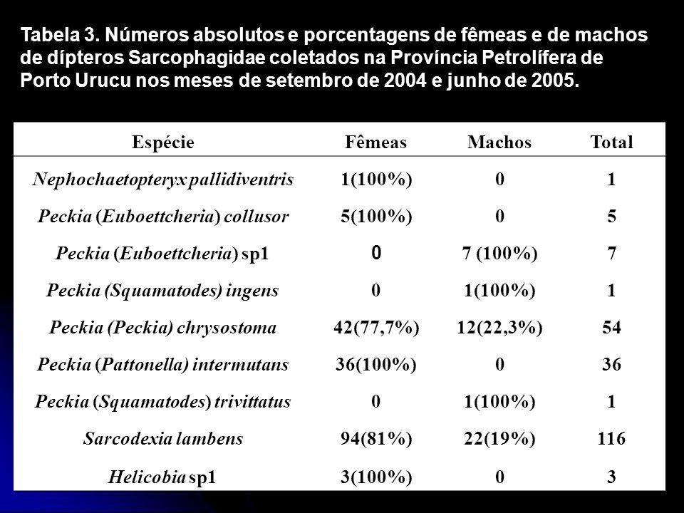 EspécieFêmeasMachosTotal Nephochaetopteryx pallidiventris1(100%)01 Peckia (Euboettcheria) collusor5(100%)05 Peckia (Euboettcheria) sp1 0 7 (100%)7 Pec