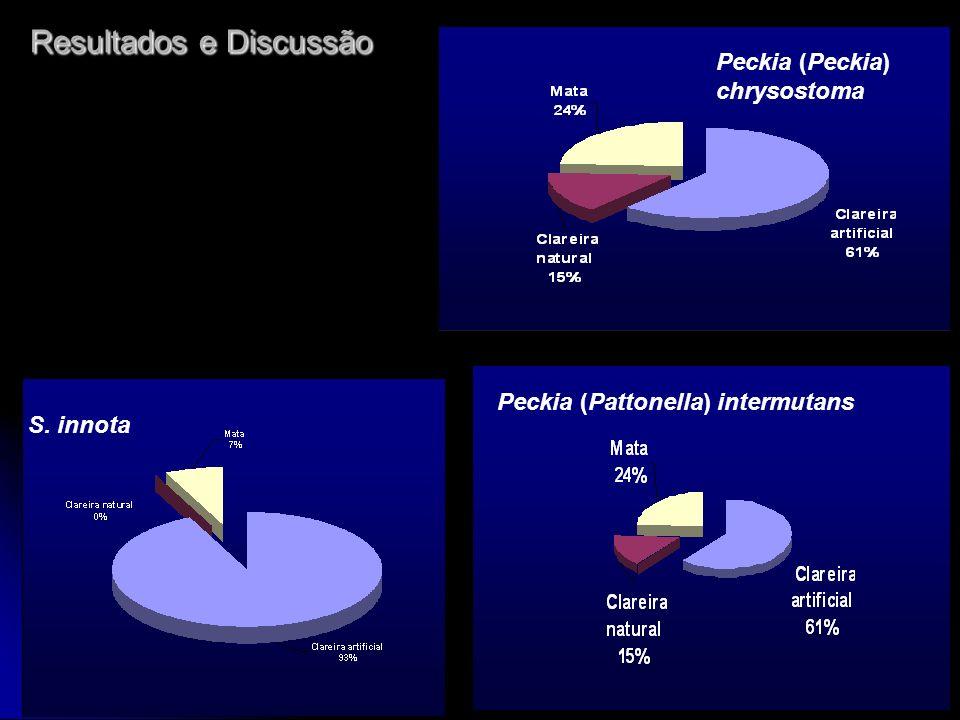 S. innota Peckia (Pattonella) intermutans Peckia (Peckia) chrysostoma Resultados e Discussão