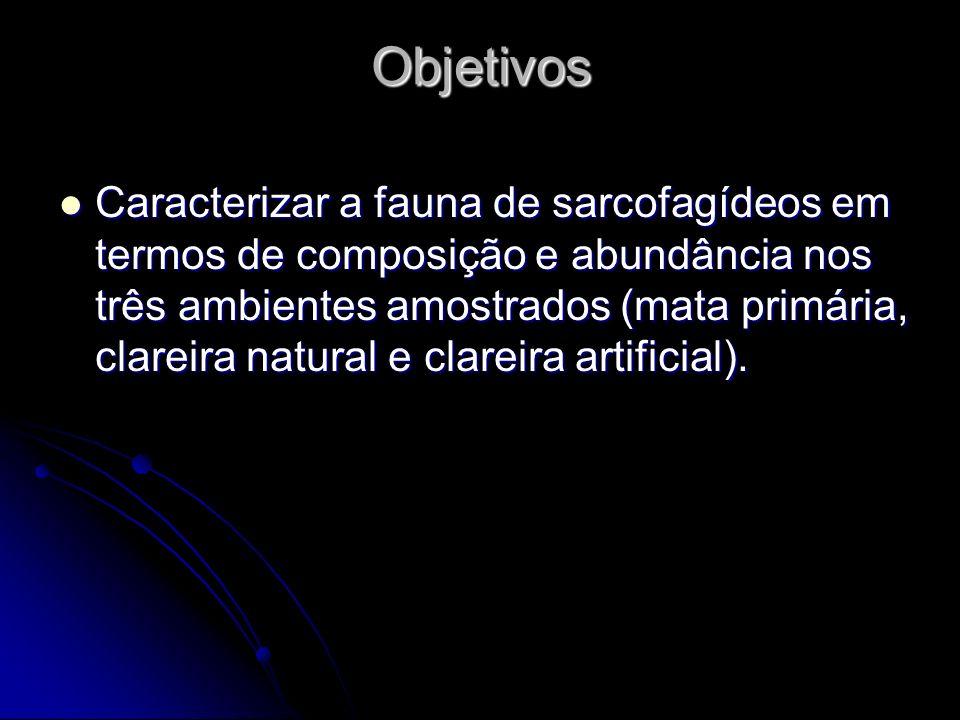 Objetivos Caracterizar a fauna de sarcofagídeos em termos de composição e abundância nos três ambientes amostrados (mata primária, clareira natural e