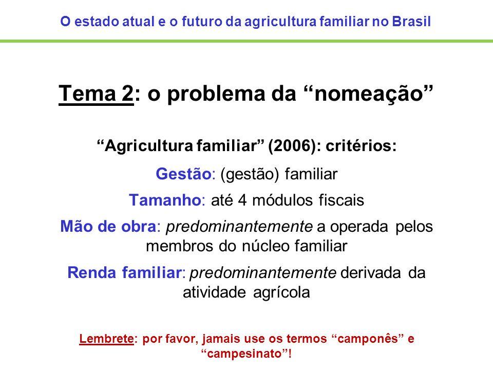 O estado atual e o futuro da agricultura familiar no Brasil Tema 2: o problema da nomeação Agricultura familiar (2006): critérios: Gestão: (gestão) fa