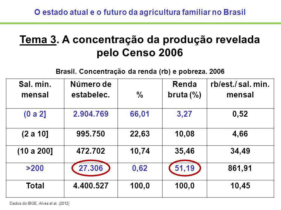 O estado atual e o futuro da agricultura familiar no Brasil Tema 3. A concentração da produção revelada pelo Censo 2006 Brasil. Concentração da renda