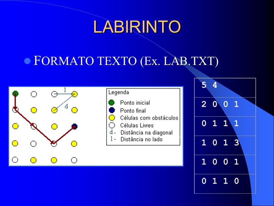 LABIRINTO F ORMATO TEXTO (Ex. LAB.TXT) 5 4 2 0 0 1 0 1 1 1 1 0 1 3 1 0 0 1 0 1 1 0