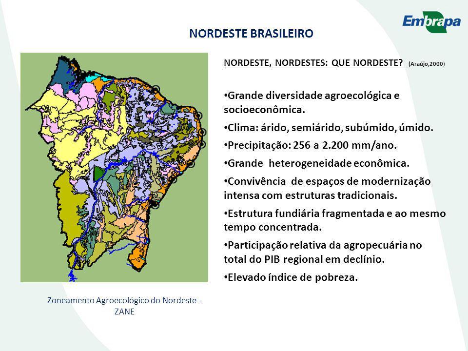 Zoneamento Agroecológico do Nordeste - ZANE NORDESTE, NORDESTES: QUE NORDESTE? (Araújo,2000) Grande diversidade agroecológica e socioeconômica. Clima: