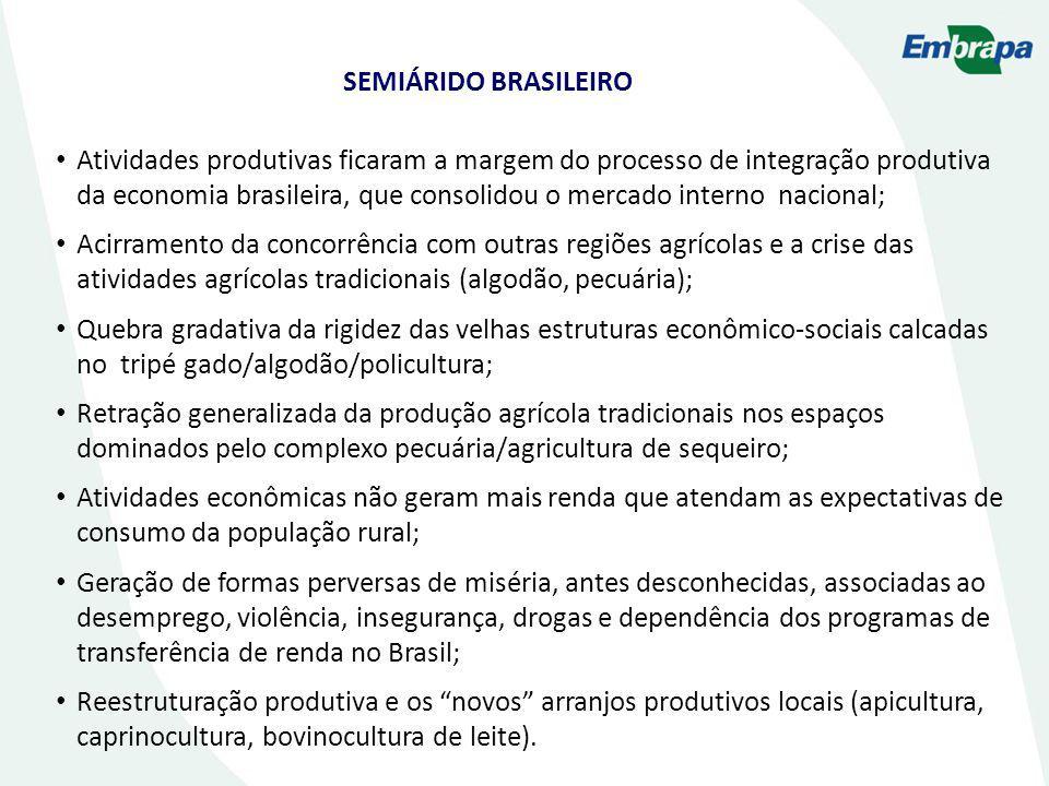 Atividades produtivas ficaram a margem do processo de integração produtiva da economia brasileira, que consolidou o mercado interno nacional; Acirrame