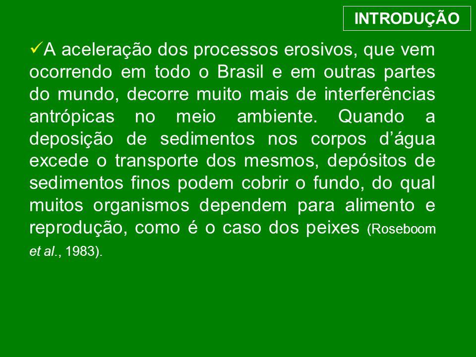 A aceleração dos processos erosivos, que vem ocorrendo em todo o Brasil e em outras partes do mundo, decorre muito mais de interferências antrópicas n