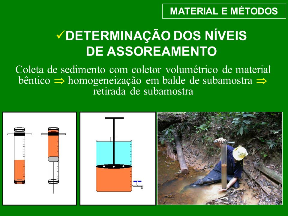 MATERIAL E MÉTODOS DETERMINAÇÃO DOS NÍVEIS DE ASSOREAMENTO Coleta de sedimento com coletor volumétrico de material bêntico homogeneização em balde de