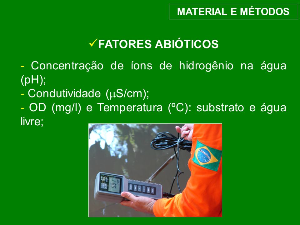 FATORES ABIÓTICOS - Concentração de íons de hidrogênio na água (pH); - Condutividade ( S/cm); - OD (mg/l) e Temperatura (ºC): substrato e água livre;