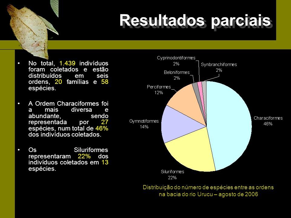 Resultados parciais No total, 1.439 indivíduos foram coletados e estão distribuídos em seis ordens, 20 famílias e 58 espécies. A Ordem Characiformes f