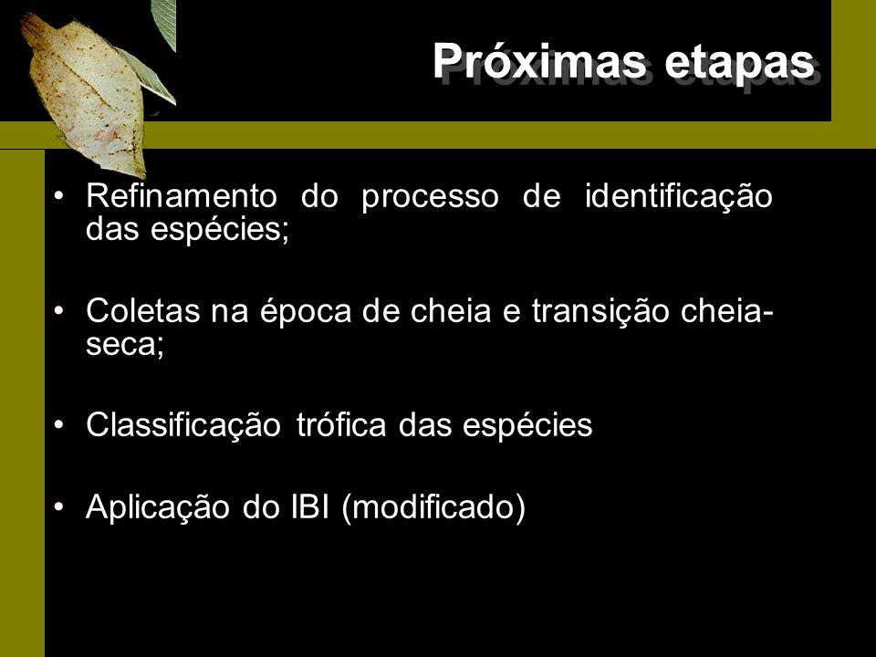 Próximas etapas Refinamento do processo de identificação das espécies; Coletas na época de cheia e transição cheia- seca; Classificação trófica das es