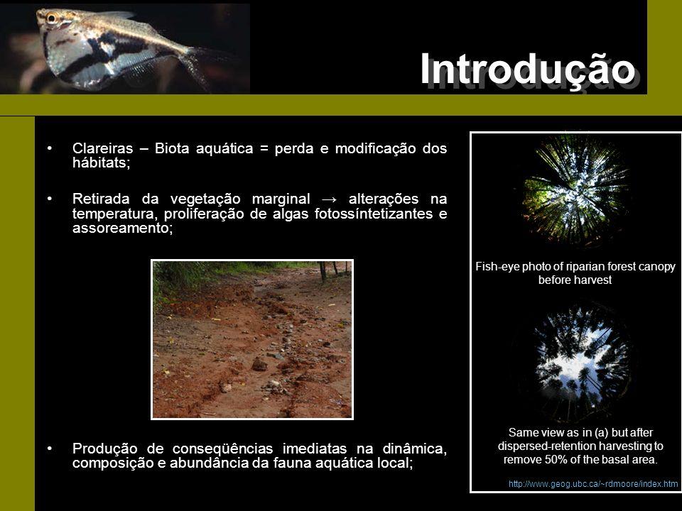 Introdução Clareiras – Biota aquática = perda e modificação dos hábitats; Retirada da vegetação marginal alterações na temperatura, proliferação de al