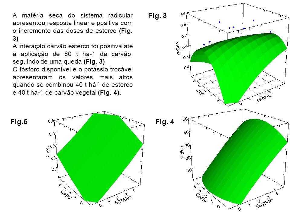 A matéria seca do sistema radicular apresentou resposta linear e positiva com o incremento das doses de esterco (Fig. 3) A interação carvão esterco fo