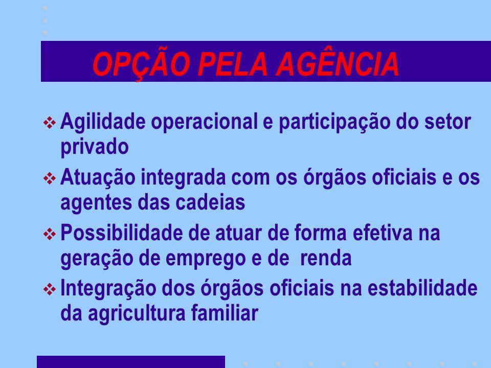 OPÇÃO PELA AGÊNCIA Agilidade operacional e participação do setor privado Atuação integrada com os órgãos oficiais e os agentes das cadeias Possibilida
