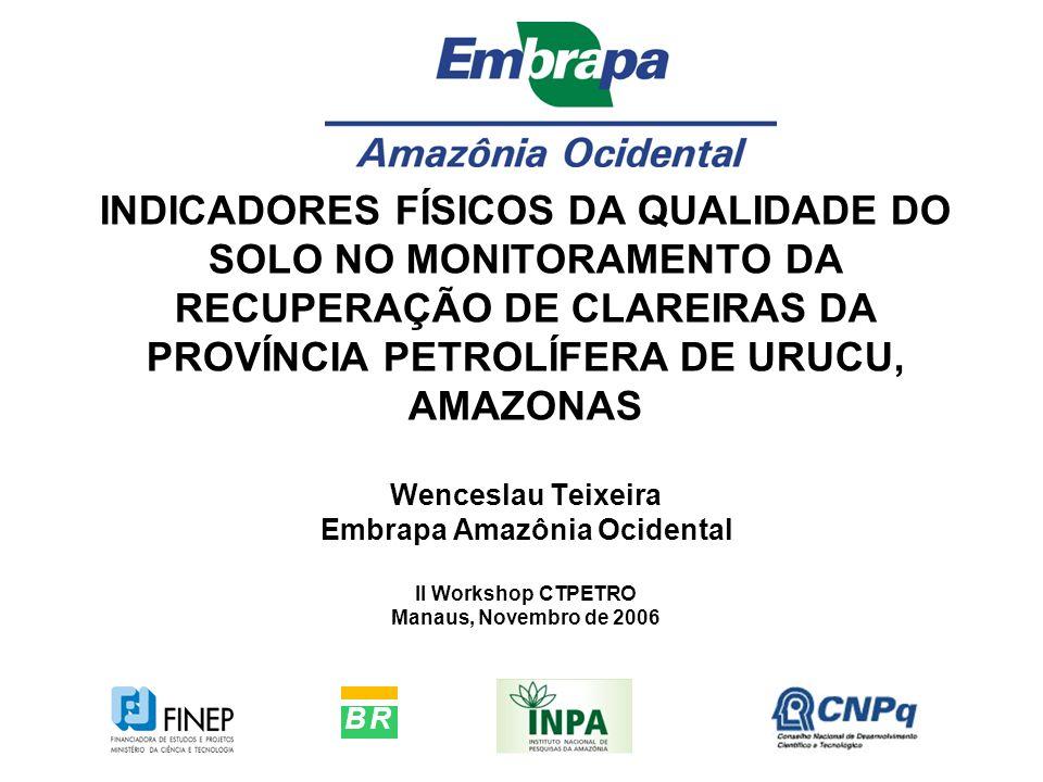 INDICADORES FÍSICOS DA QUALIDADE DO SOLO NO MONITORAMENTO DA RECUPERAÇÃO DE CLAREIRAS DA PROVÍNCIA PETROLÍFERA DE URUCU, AMAZONAS Wenceslau Teixeira E