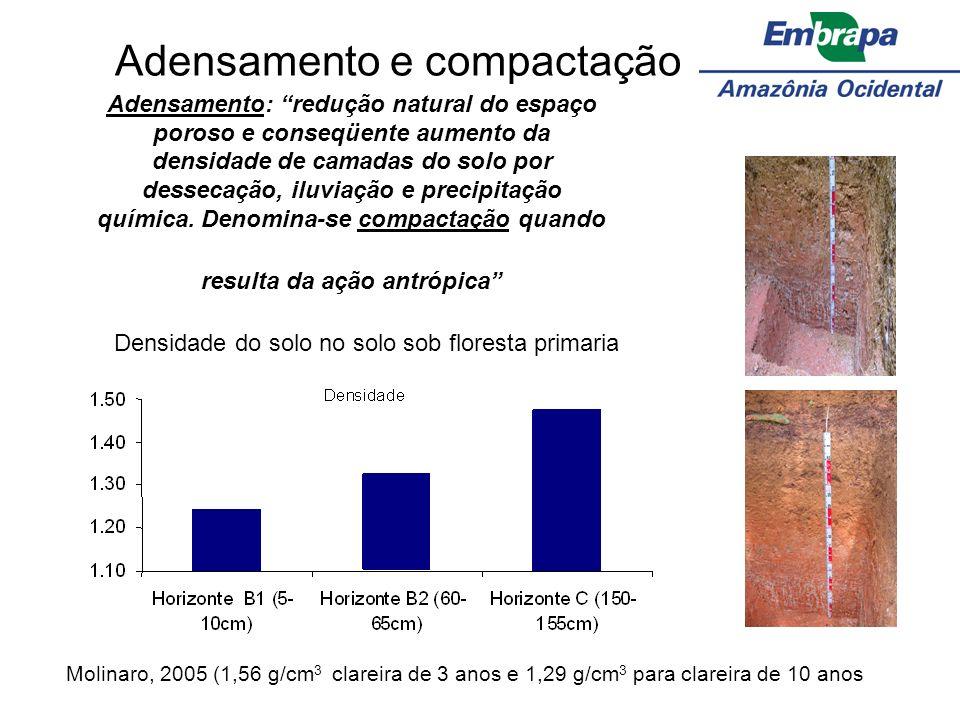 Adensamento e compactação Adensamento: redução natural do espaço poroso e conseqüente aumento da densidade de camadas do solo por dessecação, iluviaçã
