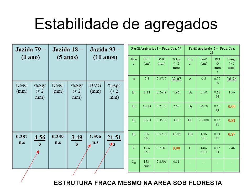 Estabilidade de agregados Jazida 79 – (0 ano) Jazida 18 – (5 anos) Jazida 93 – (10 anos) DMG (mm) %Agr (> 2 mm) DMG (mm) %Agr (> 2 mm) DMG (mm) %Agr (