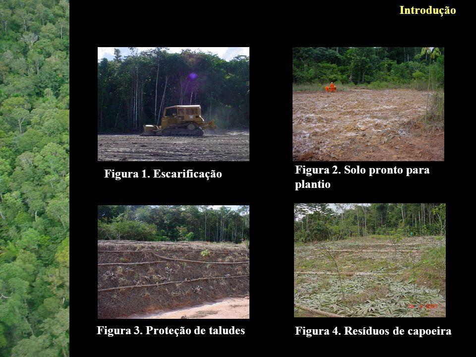 Este trabalho teve como objetivo verificar o efeito a médio prazo da aplicação de topsoil sobre o estabelecimento de espécies provenientes do banco de sementes durante um período de cinco anos.